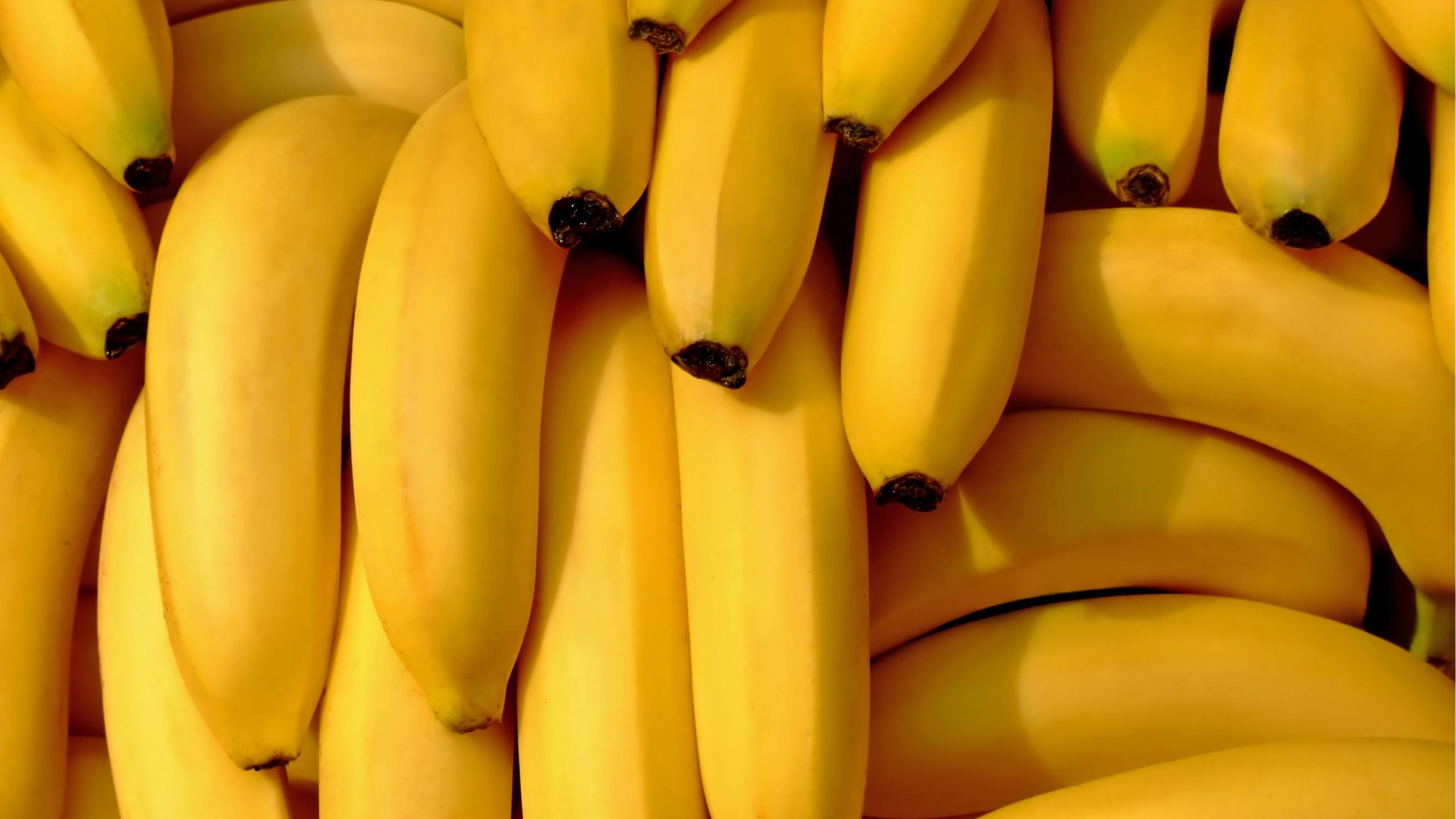 Os benefícios do abacate, do amendoim e da banana pro seu corpo