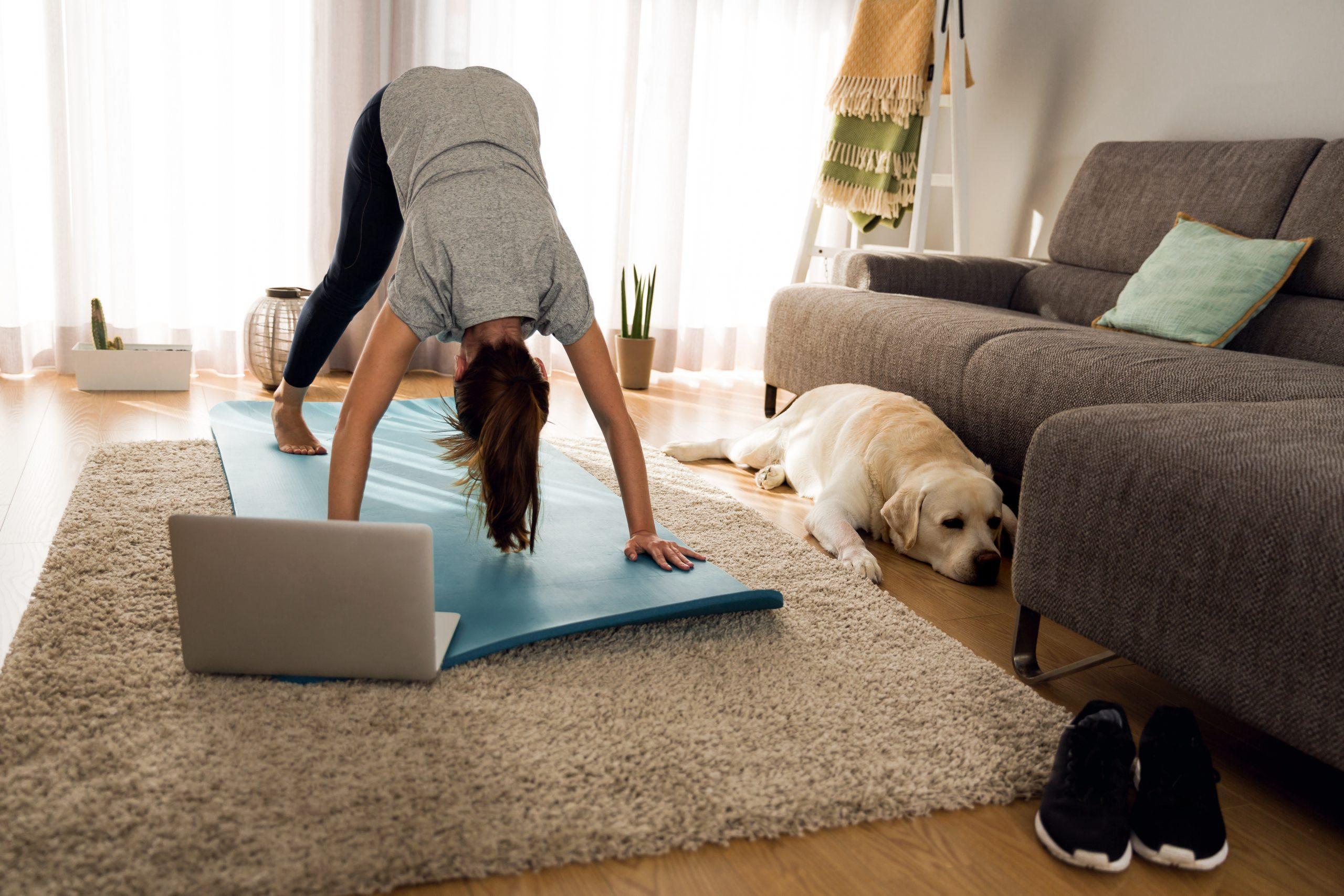 Cachorro olhando para baixo e mais 9 posturas de yoga para iniciantes